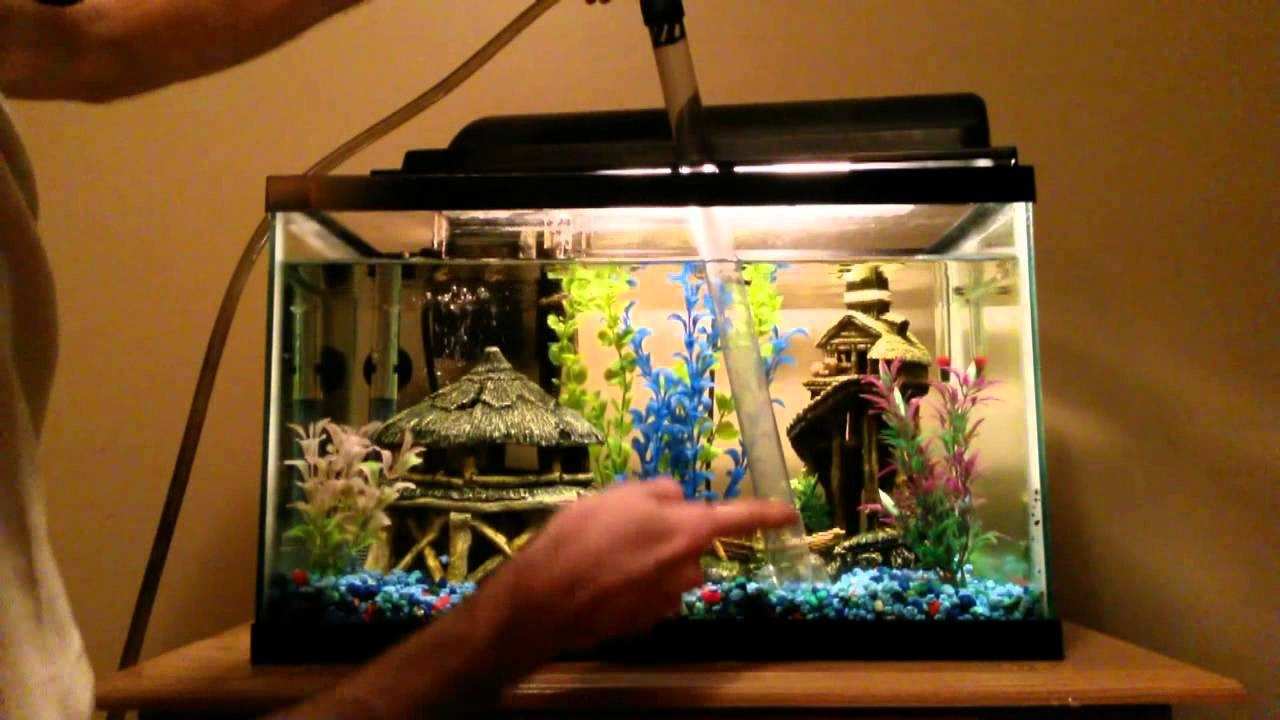 How Often Should You Change Aquarium Water?
